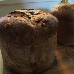 Two traditional panettone, perfect for French Toast.